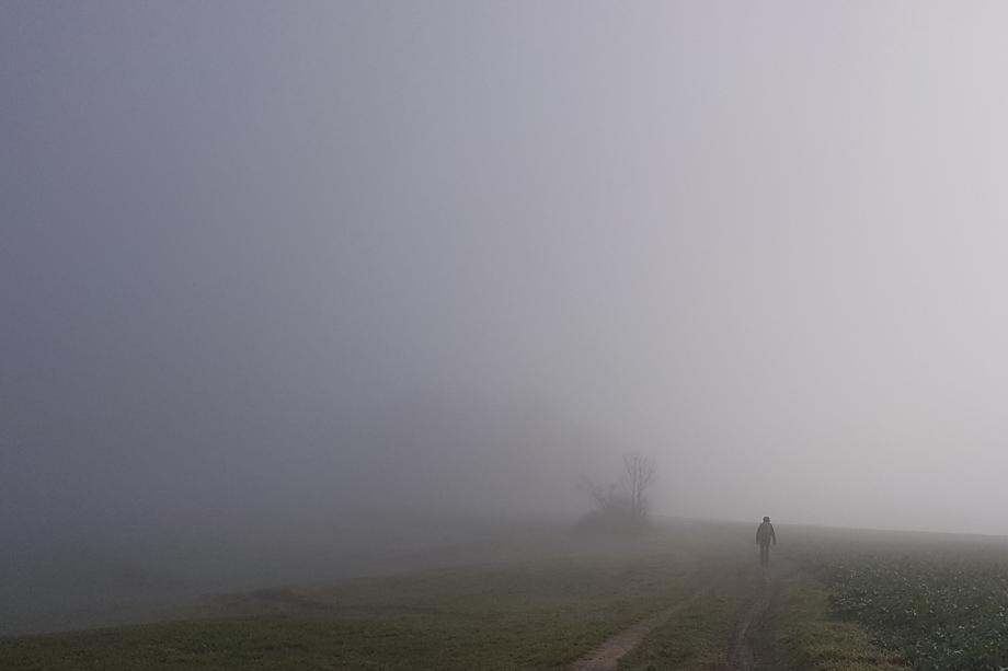 ebrach_rundweg_nummer4-20191221_111839