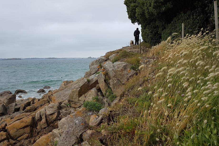 Bretagne_Naturschauspiel_20190529_160750
