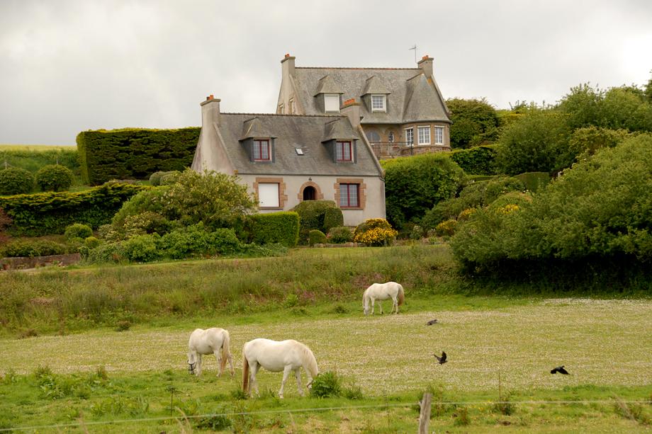 Bretagne_Naturschauspiel_DSC_3691