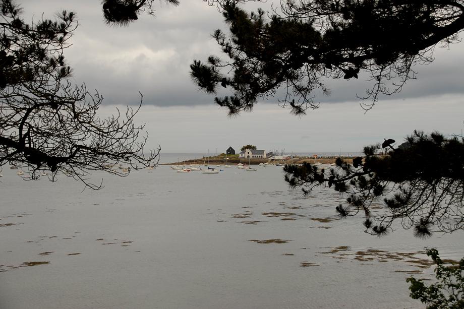 Bretagne_Naturschauspiel_DSC_4439