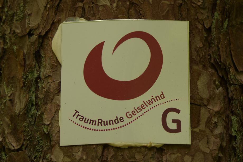 Traumrunde_Geiselwind_DSC_3372