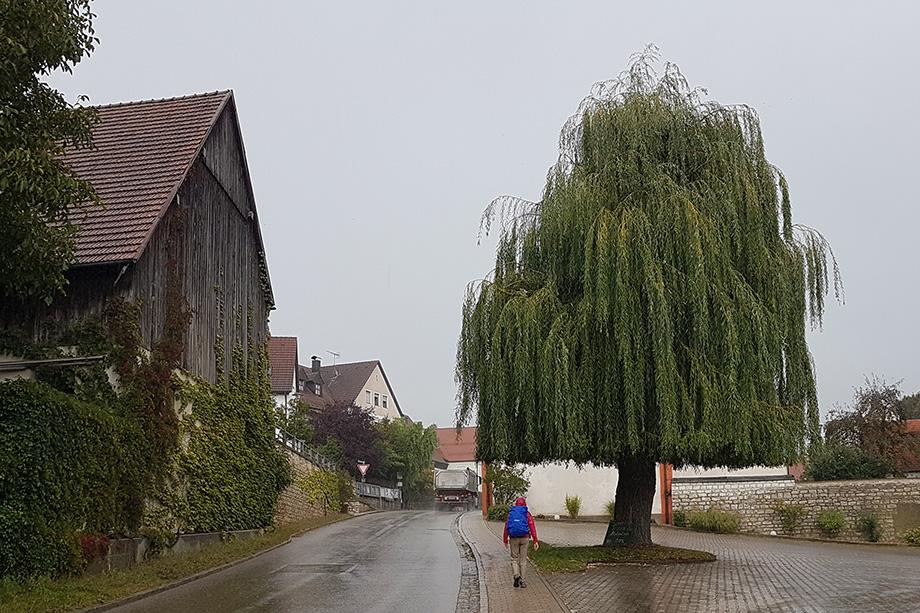 Frankenweg_20200923_104243