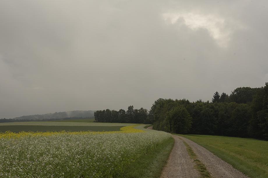 Frankenweg_DSC_8131