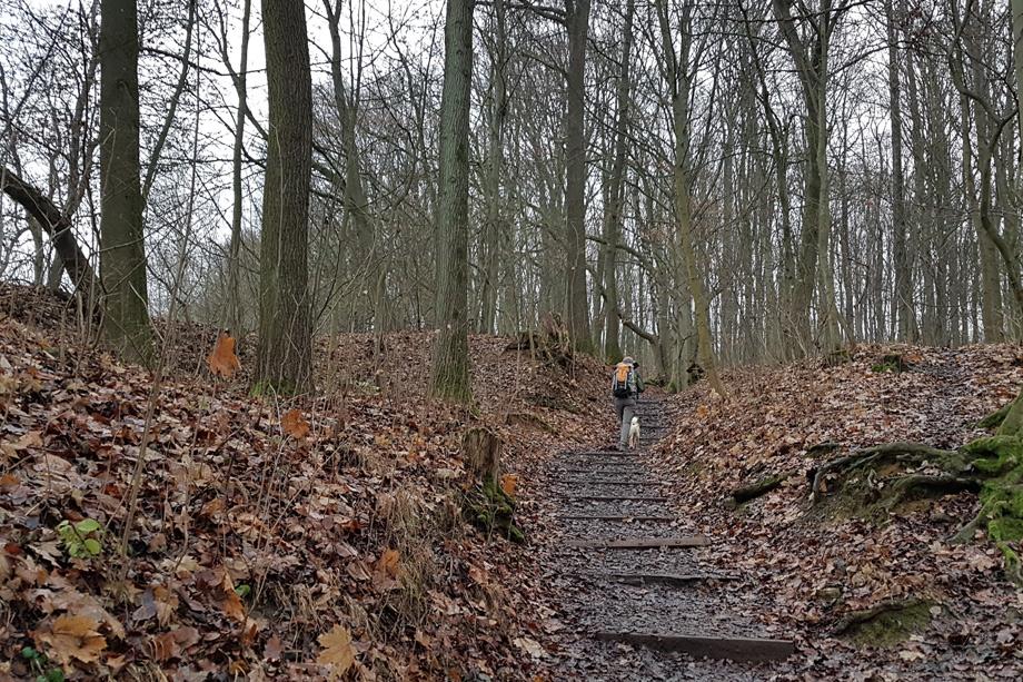 Staffelberg_Vierzehnheiligen_20201219_083904