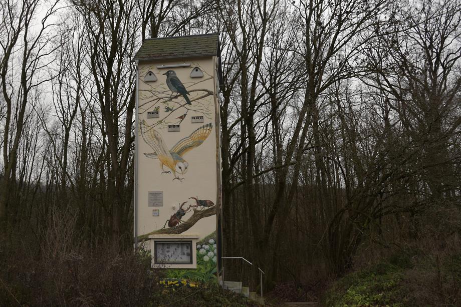 Staffelberg_Vierzehnheiligen_DSC_9310
