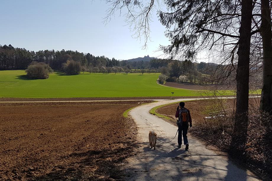 Burg_Hoheneck_20210425_095247