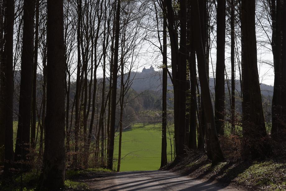 Burg_Hoheneck_DSC_9761